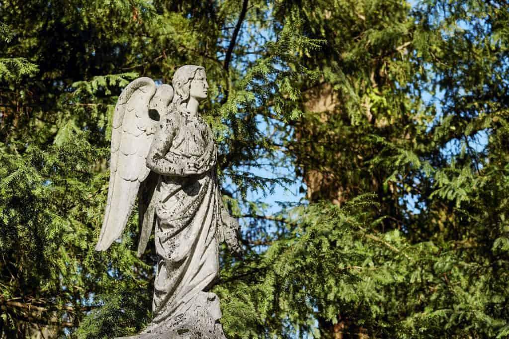 angel number 6