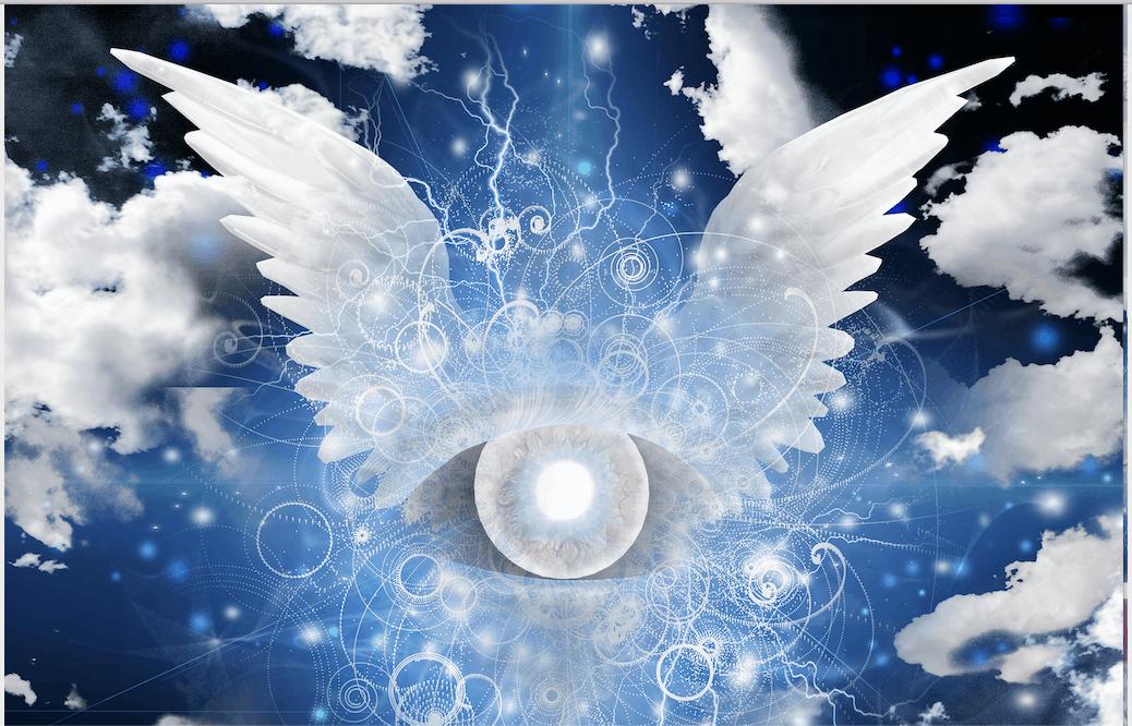 angelc-wings
