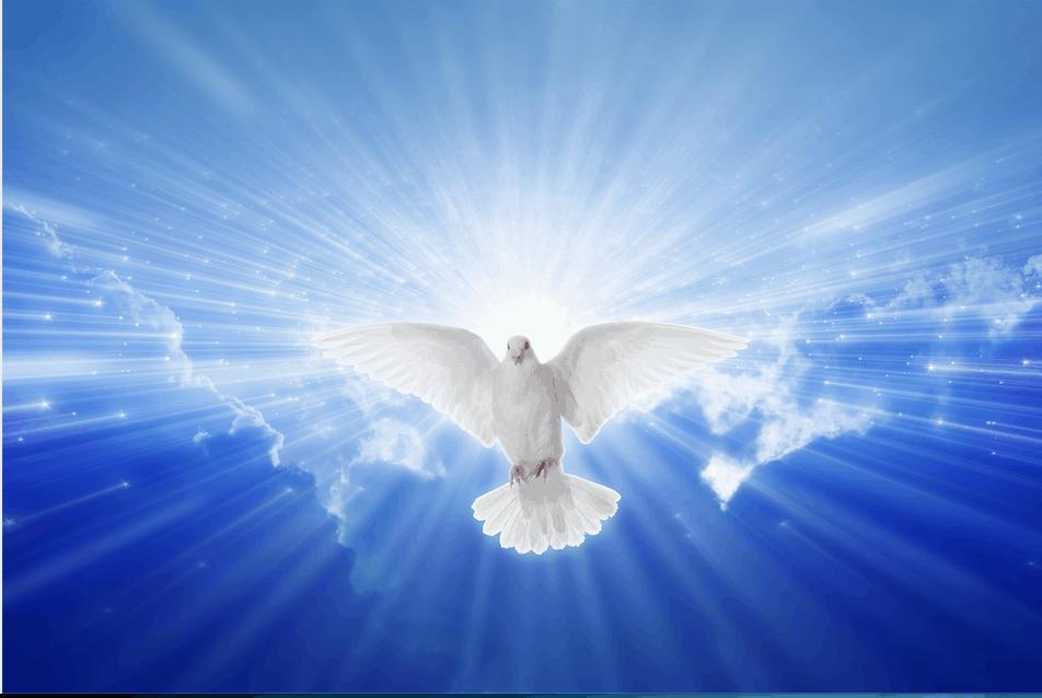 holy-presence