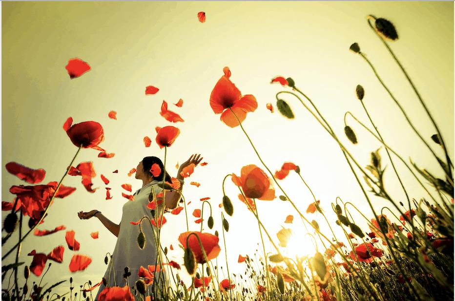 flower-happyness