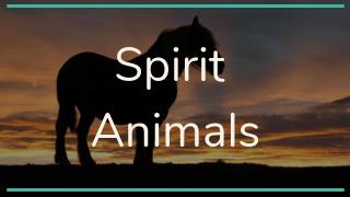 spirit-animal-guide