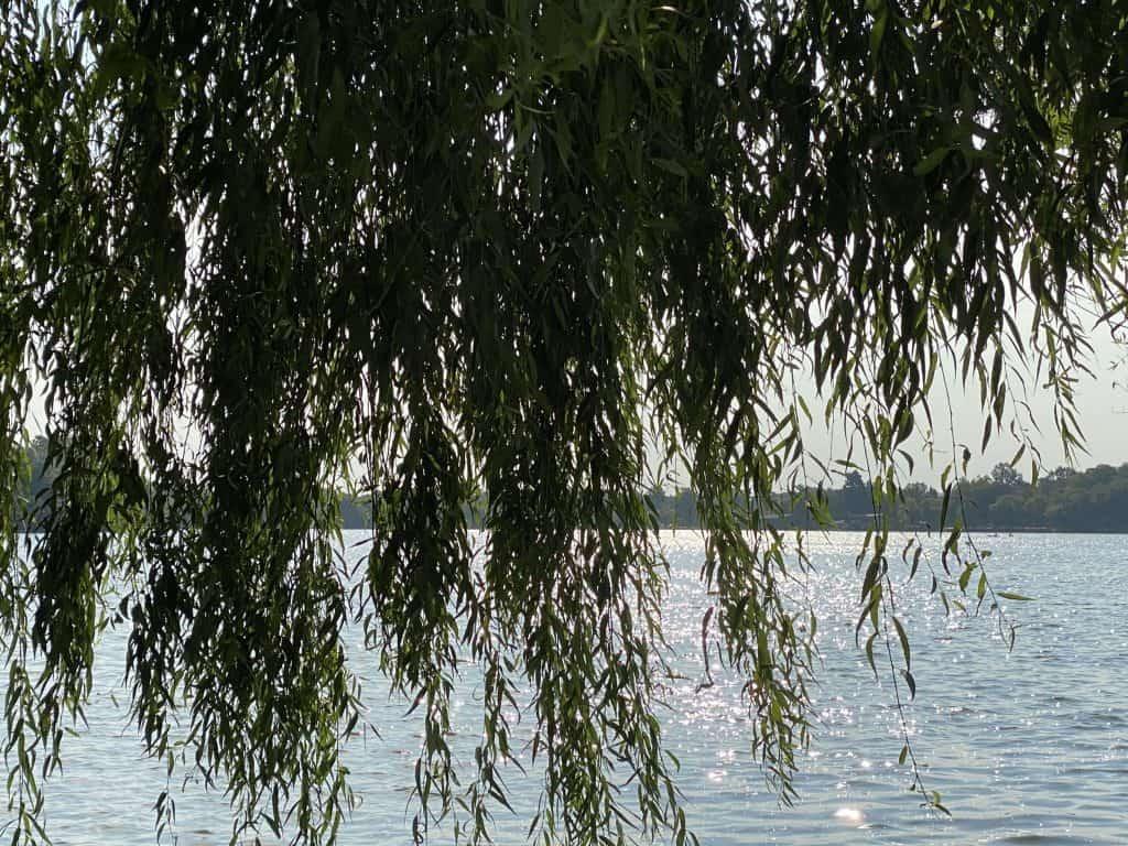 healing-water-nature