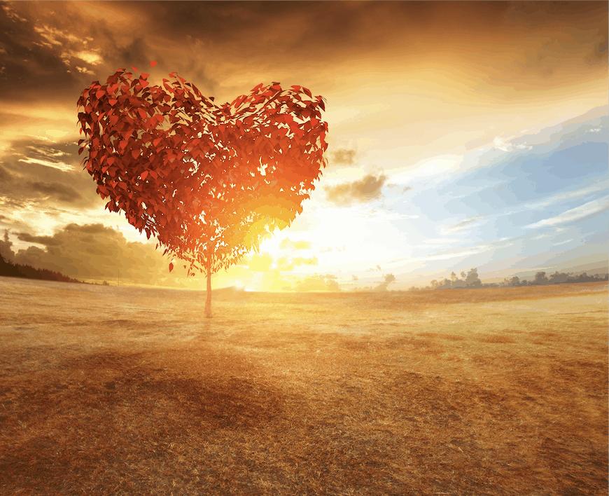 heart-love-tree